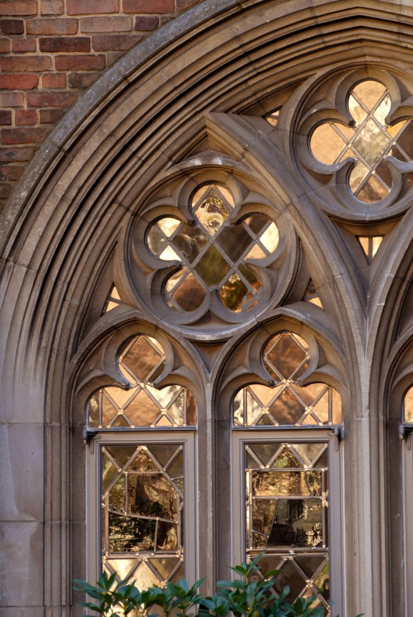 ornate window - Yale